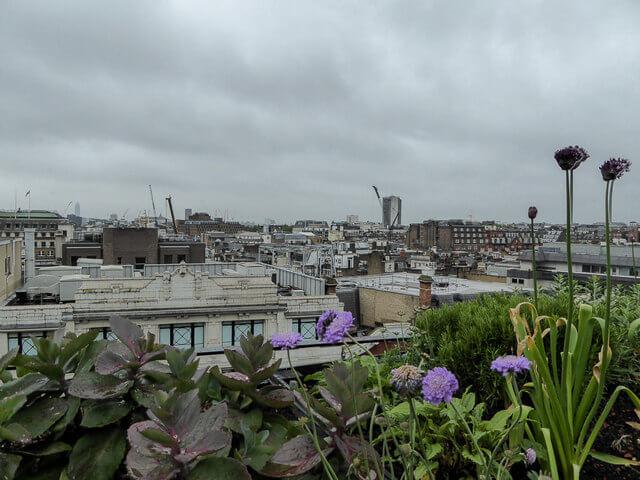 Rooflight Inspiration Tips Amp Advice Roof Maker Blog